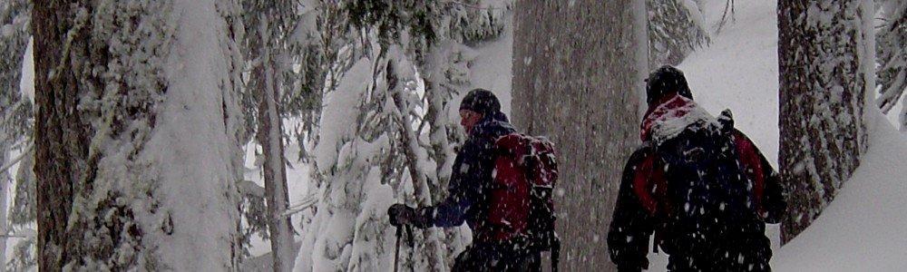 Ski touring in Strathcona Park