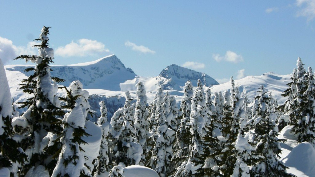 View of Mt Albert Edward from mount Washington Alpine Resort on Vancouver Island Canada
